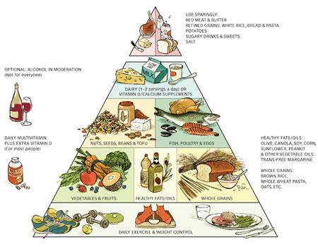 voedingsschema maken voor bodybuilding en fitness